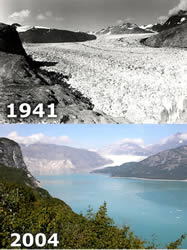 Muir Glacier Comparison