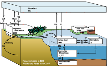 modified IPCC carbon cycle